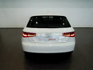 Foto 4 de Audi A3 1.6 TDI CD Attraction 81kW (110CV)