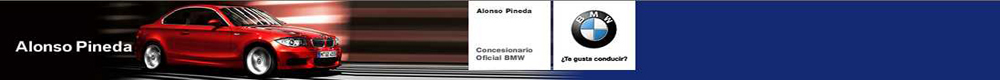 concesionario Alonso Pineda S.L.